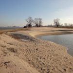 Ewijkse Plaat na hoogwater 28 januari 2011 Bart Peters (39)
